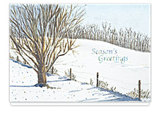 Glistening Snowscape Christmas Cards