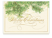 Glistening Evergreen Branches Cards