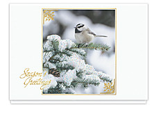 Chickadee Greetings Cards