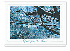 Full Moon Winter Night Holiday Cards