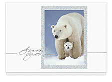 Holiday Bears Season's Greeting Cards