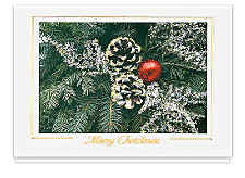 Frosted Pinecones Merry Christmas Cards