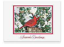 Cardinal and Berries Seasons Greeting Cards
