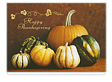Harvest Bounty  Thanksgiving Cards