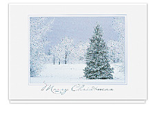 Peaceful Winter Merry Christmas Cards