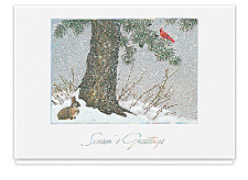Peaceful Forest Seasons Greeting Cards
