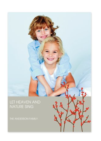 Red Berry Bush Holiday Photo Cards